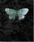 Blue Wings Moth Wrapped Canvas Giclee Print Wall Art