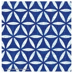 Bright Lattice Tile IV Absorbent Coasters by Michael Mullan, Set of 12
