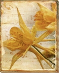 Bright Yellow Lilies Wrapped Canvas Giclee Print Wall Art