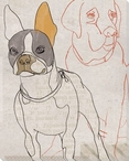 Brown Dog Face Wrapped Canvas Giclee Print Wall Art