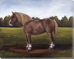 Brown Horse Wrapped Canvas Giclee Print Wall Art
