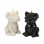 Bulldog Puppy Candles, Set of 4