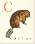 C. Castor Wrapped Canvas Giclee Print Wall Art