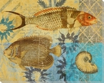 Caribbean Cove Fish 1 Wrapped Canvas Giclee Print Wall Art