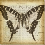 Carte Postale Butterfly I Wrapped Canvas Giclee Print Wall Art