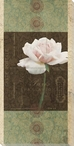 Carte Postale Roses 2 Wrapped Canvas Giclee Art Print Wall Art