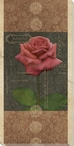 Carte Postale Roses 4 Wrapped Canvas Giclee Art Print Wall Art