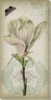 Cartouche & Floral I Wrapped Canvas Giclee Print Wall Art