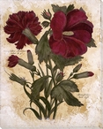 Caryophyllus Maximus Flowers Wrapped Canvas Giclee Print Wall Art