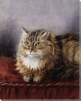 Cat on a Red Cushion Wrapped Canvas Giclee Print Wall Art