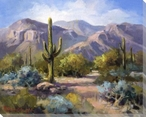 Catalina Foothills Wrapped Canvas Giclee Print Wall Art