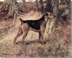 Ch. Dumbarton Lass, Airedale Dog Wrapped Canvas Giclee Print Wall Art