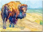 Changing Time Bison Wrapped Canvas Giclee Print Wall Art