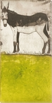 Citron Donkey Wrapped Canvas Giclee Print Wall Art