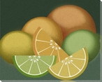 Citrus Still Life Wrapped Canvas Giclee Print Wall Art