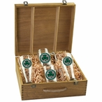 Clover Green Pilsner Glasses & Beer Mugs Box Set with Pewter Accents