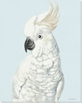 Cockatoo Bird Pose Wrapped Canvas Giclee Print Wall Art