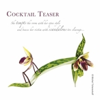 Cocktail Teaser Beverage Coasters by Michael Tcherevkoff, Set of 12