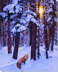 Cold Fire Fox in the Snowy Forest Wrapped Canvas Giclee Print