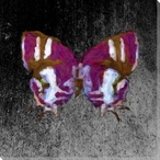 Colored Butterfly 3 Wrapped Canvas Giclee Print Wall Art