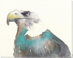 Colorful Bald Eagle Bird Wrapped Canvas Giclee Art Print Wall Art