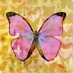 Colorful Butterflies 2 Wrapped Canvas Giclee Art Print Wall Art