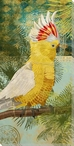 Colorful Cockatoo Bird Wrapped Canvas Giclee Print Wall Art