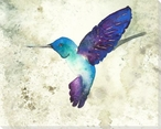 Colorful Hummingbird Wrapped Canvas Giclee Art Print Wall Art