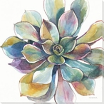 Colorful Succulent Flower 1 Wrapped Canvas Giclee Print Wall Art