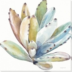 Colorful Succulent Flower 4 Wrapped Canvas Giclee Print Wall Art