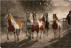 Coming Home Running Horses Wrapped Canvas Giclee Art Print Wall Art