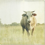 Cow in the Field Wrapped Canvas Giclee Print Wall Art