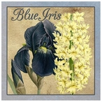 Custom Blue Iris with Yellow Flower Reverie Vintage Style Metal Sign