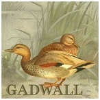 Custom Just Ducky Gadwall Ducks Vintage Style Metal Sign