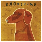 Dachshund Dog Absorbent Beverage Coasters by John W Golden, Set of 12