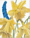 Daffodils and Hyacinth Flowers I Wrapped Canvas Giclee Print