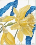 Daffodils and Hyacinth Flowers II Wrapped Canvas Giclee Print