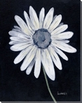 Daisy Flower Wrapped Canvas Giclee Print Wall Art