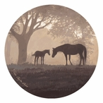 Dawn's First Light Horses Absorbent Round Beverage Coasters, Set of 12