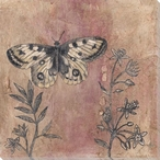 Decoupage Butterfly Wrapped Canvas Giclee Print Wall Art