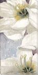Delicate Beauty Flowers I Wrapped Canvas Giclee Print Wall Art