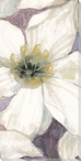 Delicate Beauty Flowers II Wrapped Canvas Giclee Print Wall Art