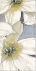 Delicate Beauty Flowers III Wrapped Canvas Giclee Print Wall Art