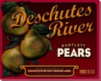 Deschutes Pears Wrapped Canvas Giclee Print Wall Art