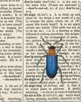 Design Bug Wrapped Canvas Giclee Print Wall Art