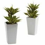 Double Mini Agave Silk Plant with Planter, Set of 2