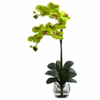 Double Phalaenopsis Green Orchid Silk Flower Arrangement with Vase