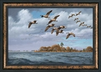 Eastern Shore Canada Geese Framed Canvas Giclee Art Print Wall Art