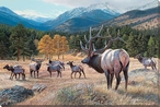 Edge Of Trouble Elk Wrapped Canvas Giclee Print Wall Art