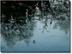 Ending Rain Scenic Wrapped Canvas Giclee Print Wall Art
